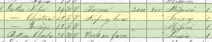 Christiane Grother 1870 census Brazeau Township MO