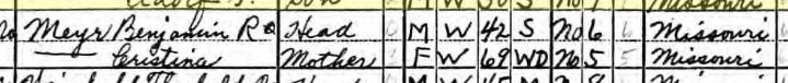 Christine Meyr 1940 census Brazeau Township MO