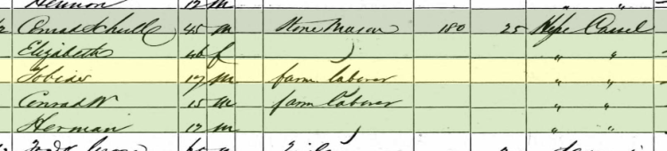 Conrad Scholl 1860 census Brazeau Township MO