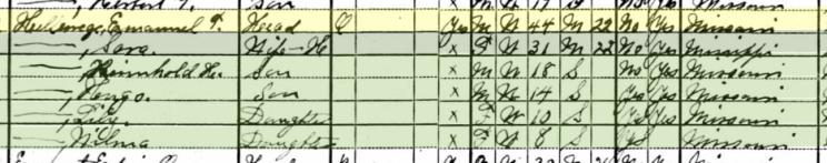 Emanuel Hellwege 1930 census Brazeau Township MO