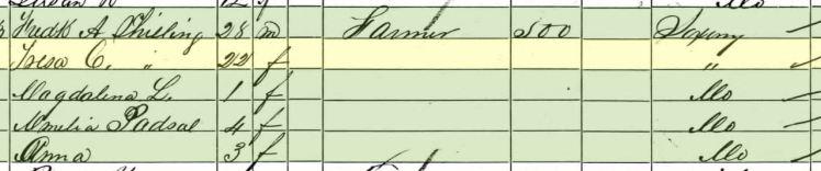 Frederick Schilling 1860 census Brazeau Township MO