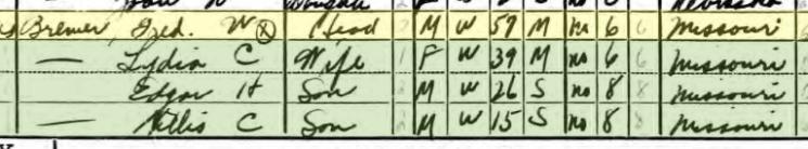 Friedrich Bremer 1940 census Brazeau Township MO