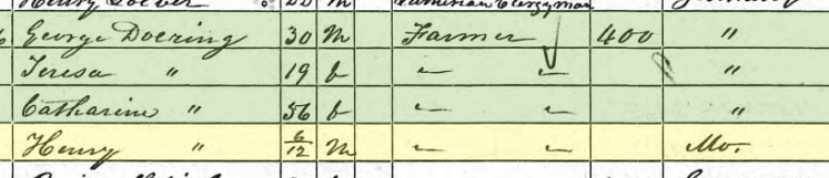 Henry Doering 1850 census Brazeau Township MO