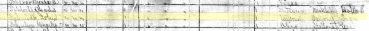 John Schmidt 1880 census Ft. Wayne IN