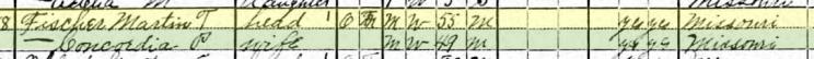 Martin Fischer 1920 census Brazeau Township MO