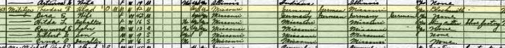 Theodore Militzer 1920 census Cape Girardeau MO