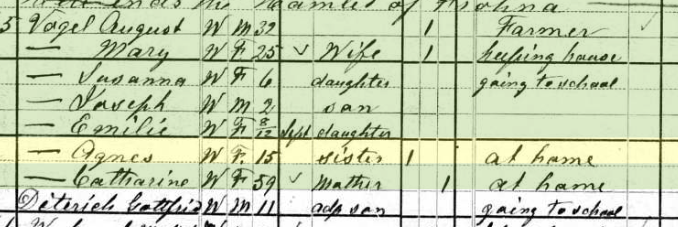 Agnes Vogel 1880 census Brazeau Township MO