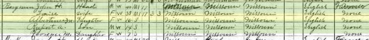 Albertina Bergmann 1910 census Central Township MO