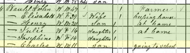 Charles Bruhl 1880 census Brazeau Township MO