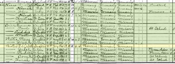 Elizabeth Winter 1900 census Rock Township MO