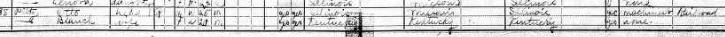 Henry A Pilz 1920 census 2 Murphysboro IL