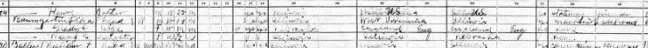 Henry A Pilz 1920 census Murphysboro IL