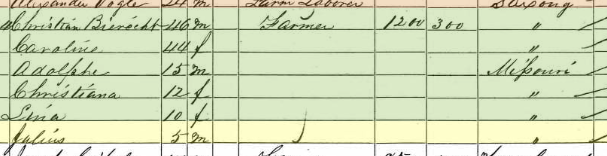 Julius Bergt 1860 census Brazeau Township MO