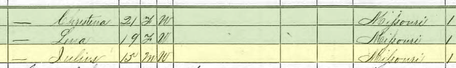 Julius Bergt 1870 census 2 Brazeau Township MO