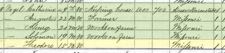 Theodore Vogel 1870 census Brazeau Township MO