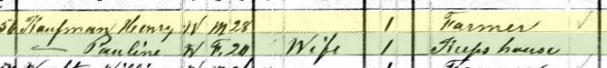 Henry Kaufmann 1880 census Brazeau Township MO