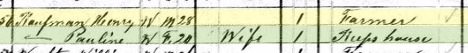 Henry Kaufmann 1880 census Brazeau Township MO