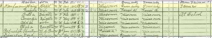 Henry Kaufmann 1900 census Brazeau Township MO